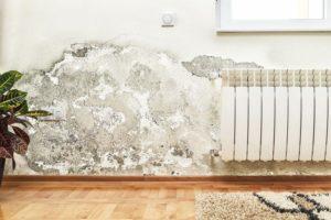 Maßnahmen für die Sanierung feuchter Wände