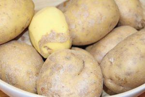 Kartoffeln als Bindemittel