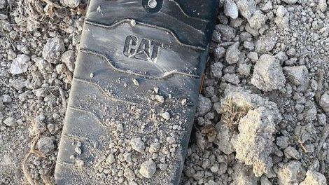 Cat_S42_.jpg