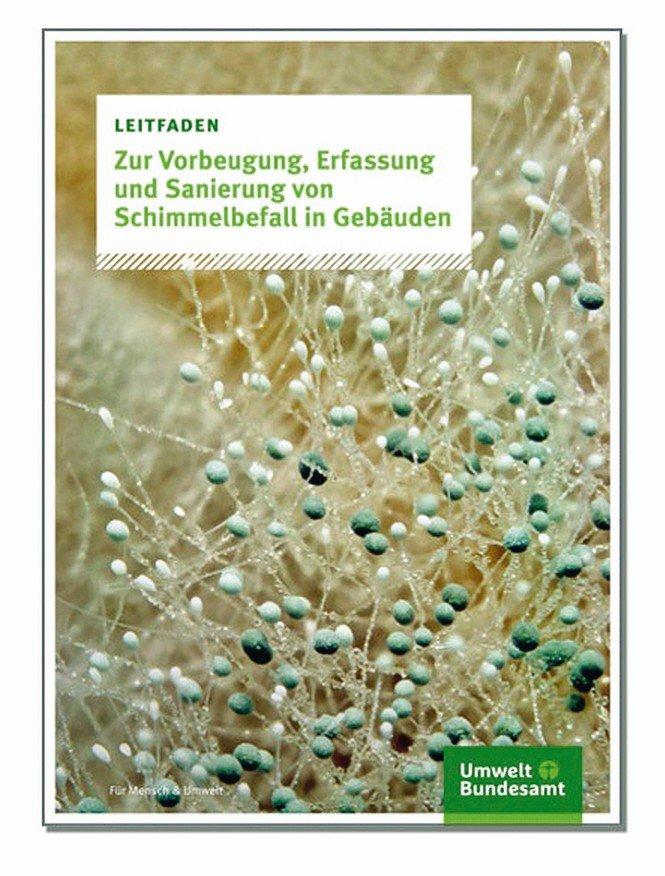Cover-UBA-Schimmelleitfaden-Beitrag.jpg
