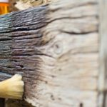 Leinoelfarbe fuer den Holzschutz_Grundierung