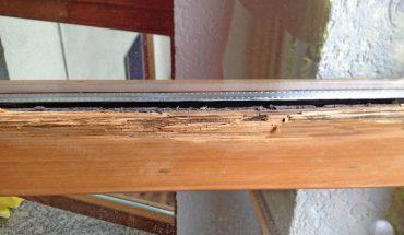 Holzfenstersanierung_Caparol_vorher.jpg