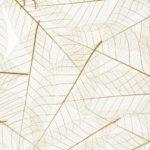 Organoid_Natural_Surface_-_Translucent.jpg